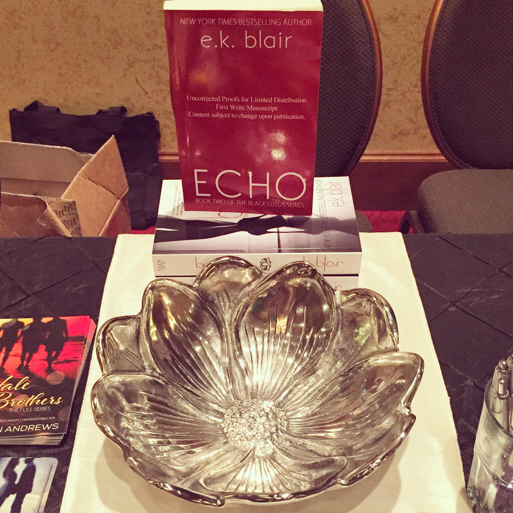 Our Echo Arc giveaway for E.k. Blair...